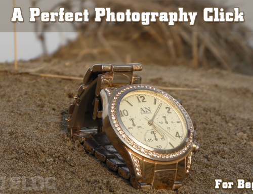 How to get a perfect photography click – for absolute beginners