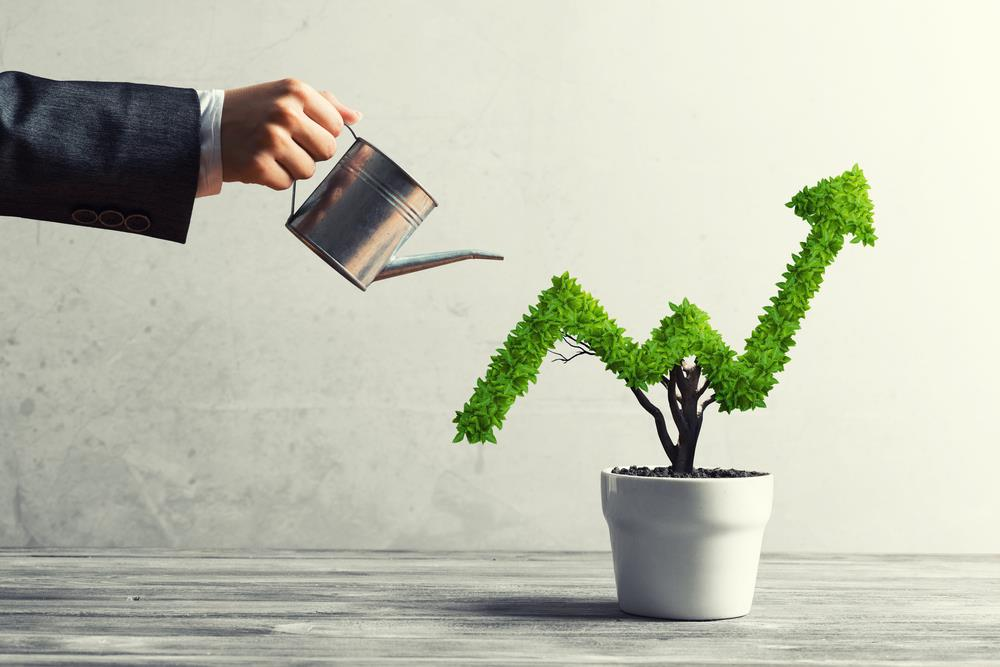 take your business to next level business growth strategies