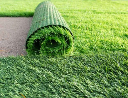 Introducing Artificial Grass in the Winter